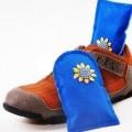 竹炭干鞋器