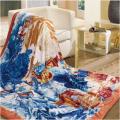 富安娜法兰绒毛毯